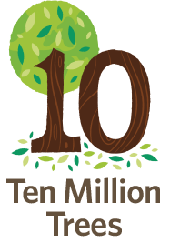 Ten Million Trees